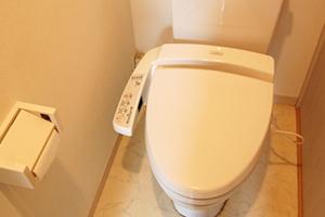 reset-toilet